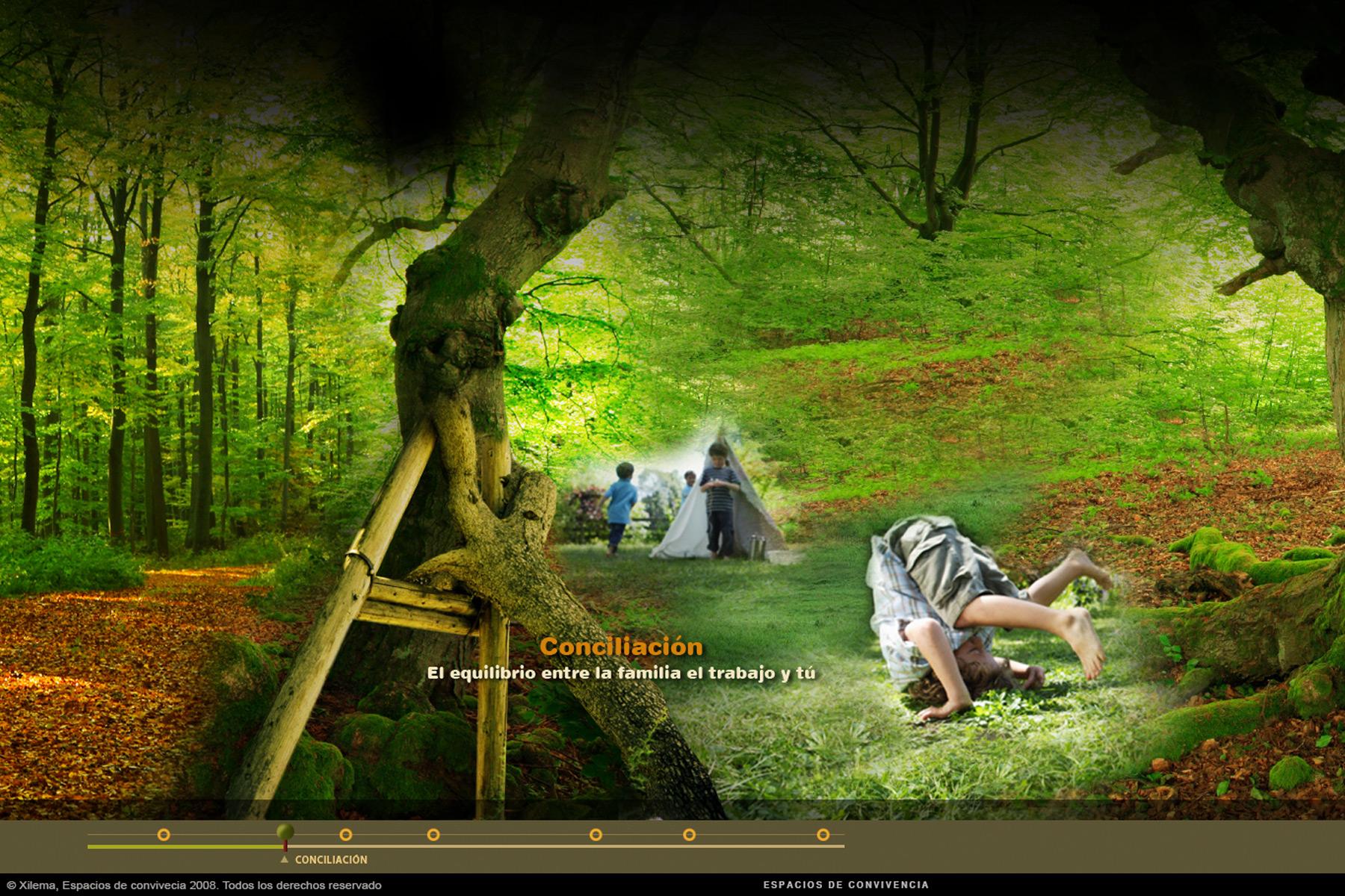 xilema-bosque-2